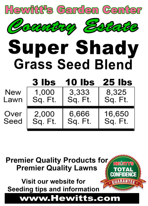 Shady Grass Seed
