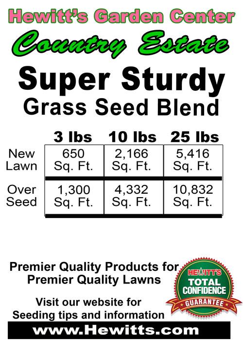 Sturdy Grass Seed